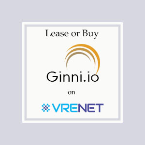 Perfect Domain Ginni.io for you